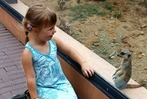 Fotoalbum: Tiergehege im Lahrer Stadtpark
