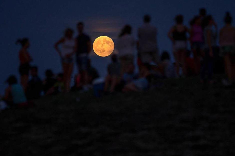 Menschen betrachten  im Cerro Del Tio Pio Park inMadrid (Spanien) die partielle Mondfinsternis . (Foto: dpa)