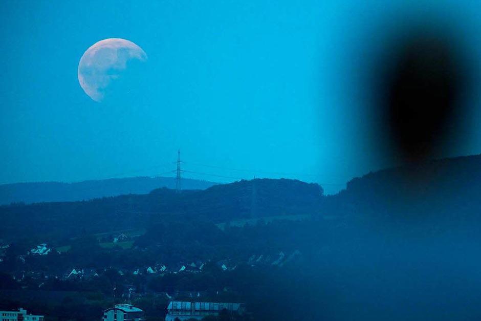 Ein Mann beobachtet in Bielefeld (Nordrhein-Westfalen) die partielle Mondfinsternis. (Foto: dpa)