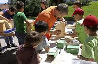 Kinder bauen ein Vogelhäuschen selbst