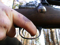 So ermittelt die Polizei im Fall des erschossenen Wolfs