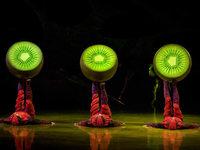 """Cirque du Soleil kommt mit """"Ovo"""" auch nach Deutschland"""