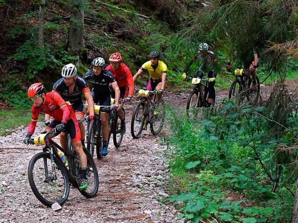 """Wie aufgeschnürt auf einer Perlenkette gehen die Biker in die letzte Kurve zum """"Gipfeltrail"""" -  ein kräftezehrender Kilometer Steigung mit mehr als 13 Prozent."""