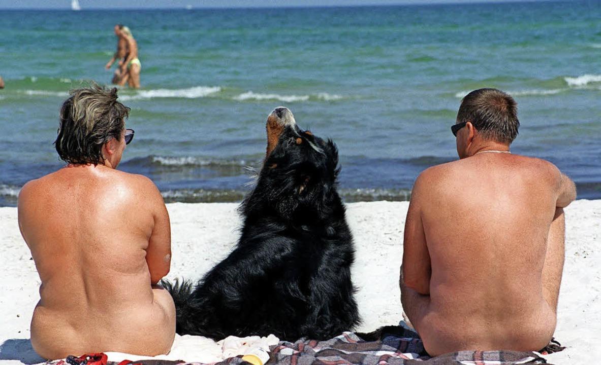 Der Hund darf hier  Fell tragen: Nackt... ein immer seltener werdenden Anblick.  | Foto: dpa