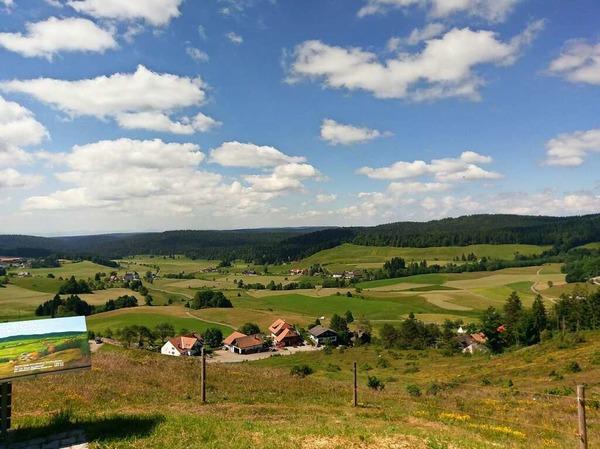 Landschaft: Gewandert ist Sonja Haßler aus Rheinfelden mit der VHS auf dem Panoramaweg Ibach.