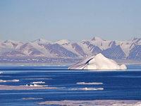 """Die """"Serengeti der Arktis"""" wird unter Schutz gestellt"""