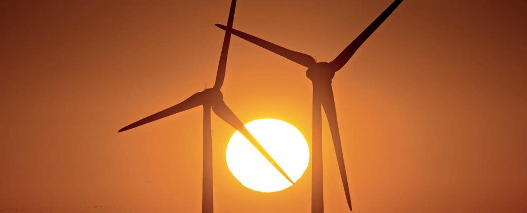 Nach dem Willen der Bundesregierung so...senschaften neue Windparks betreiben.     Foto: DPA