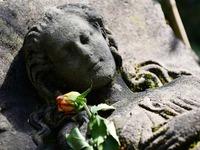 Wer bringt dem schlafenden Mädchen aus Stein die Blumen?