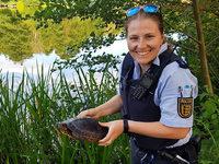 Lörracher Polizei bringt Schildkröte heim in den Grüttsee