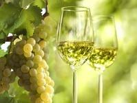 Sechs Weinfeste laden am Wochenende zum Genießen ein