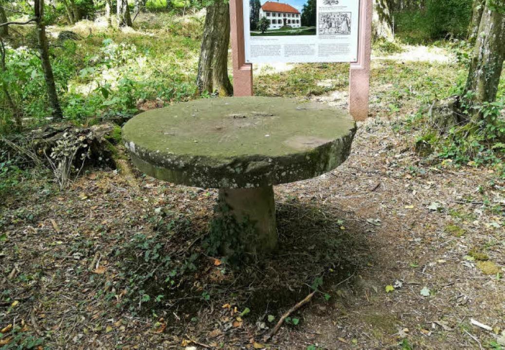 Einer von zwei Steintischen im Täuferw..., wurden sie vermutlich nicht genutzt.  | Foto: Ulrike Derndinger