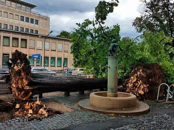 Auch vor dem C&A-Gebäude in der Innenstadt ist ein Baum umgefallen.
