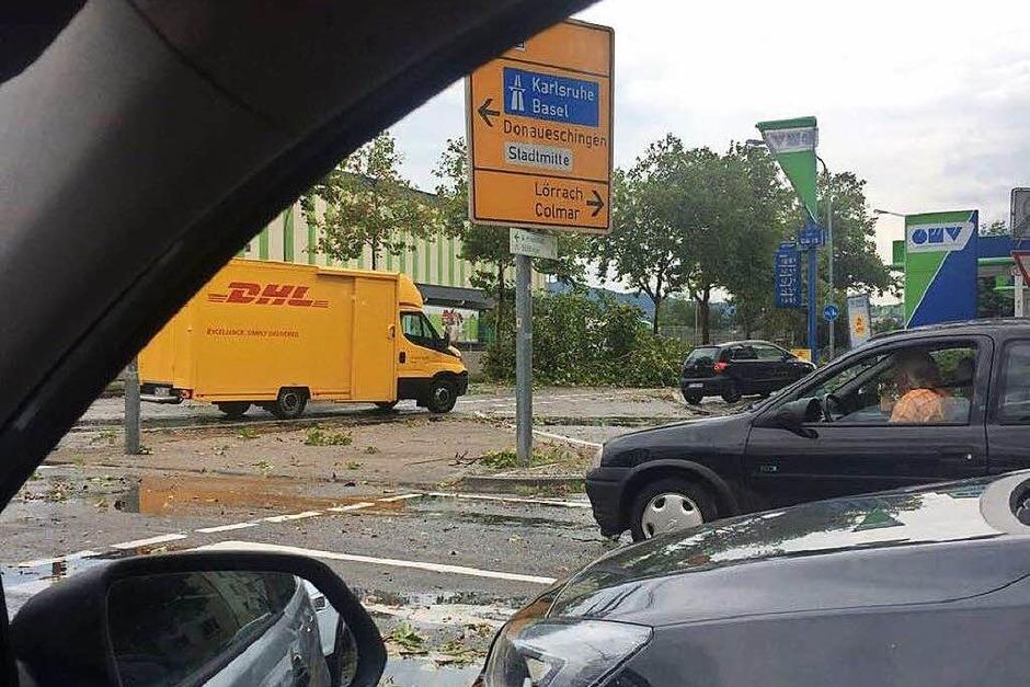 Ein kurzes und heftiges Unwetter hat in Freiburg Bäume entwurzelt und Menschen die Sicht genommen. (Foto: Julia von Samson)