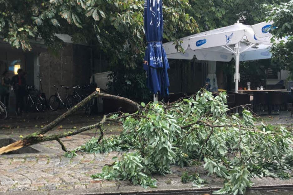Unwetter in der Gartenstraße (Foto: Alexandra Röderer)