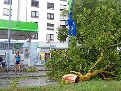 Fotos: Die Schäden nach dem Unwetter über Freiburg