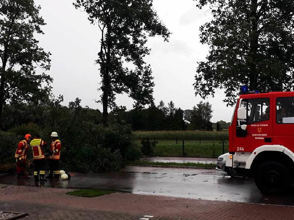 In der Cranachstraße lagen umgestürzte Bäume auf der Straße.   | Foto: Elena Bischoff