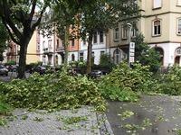 Feuerwehr rückt bei Unwetter in Freiburg 215 Mal aus