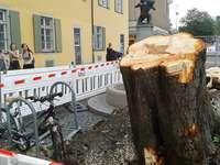 Aufräumarbeiten in Freiburg können bis zu zwei Wochen dauern