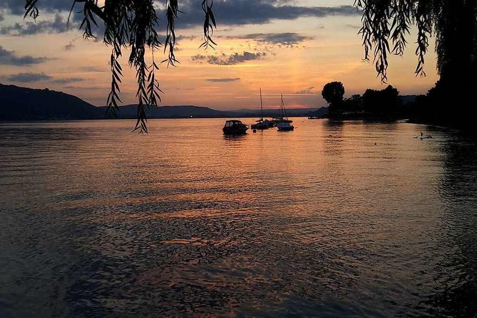 """Nacht: """"Die blaue Stunde"""" in Sipplingen am Bodensee mit Blick auf Bodmann-Ludwigshafen.Aufgenommen von Angela Merz aus Rheinfelden (Foto: Angela Merz)"""