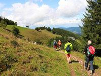 Fotos: BZ-Leserwanderung von Hinterzarten nach Kirchzarten