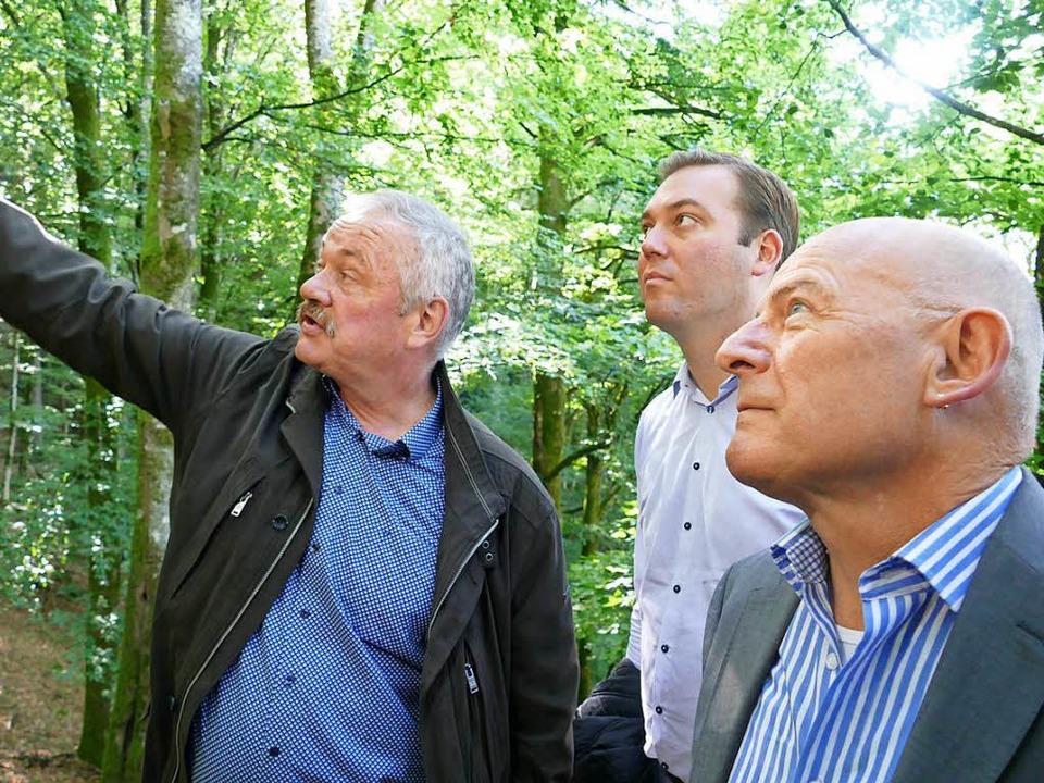 Clemens Ruch vom Landesamt für Geologi...ed Hermann die geplante Felssicherung.    Foto: Ines Maria Biedenkapp