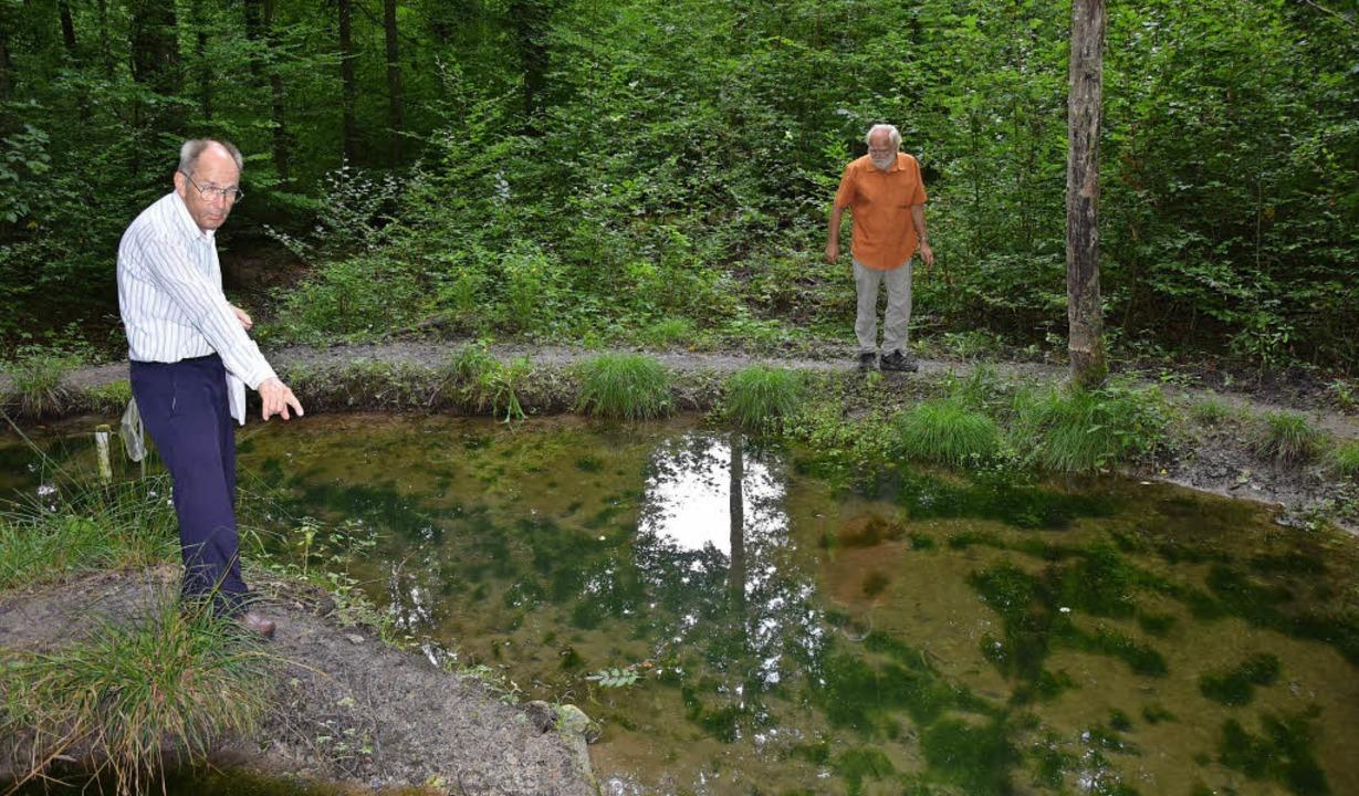 Wolfgang Scharf (links) und Wolfgang W...benden Amphibien gehalten werden soll   | Foto: Heinz Vollmar
