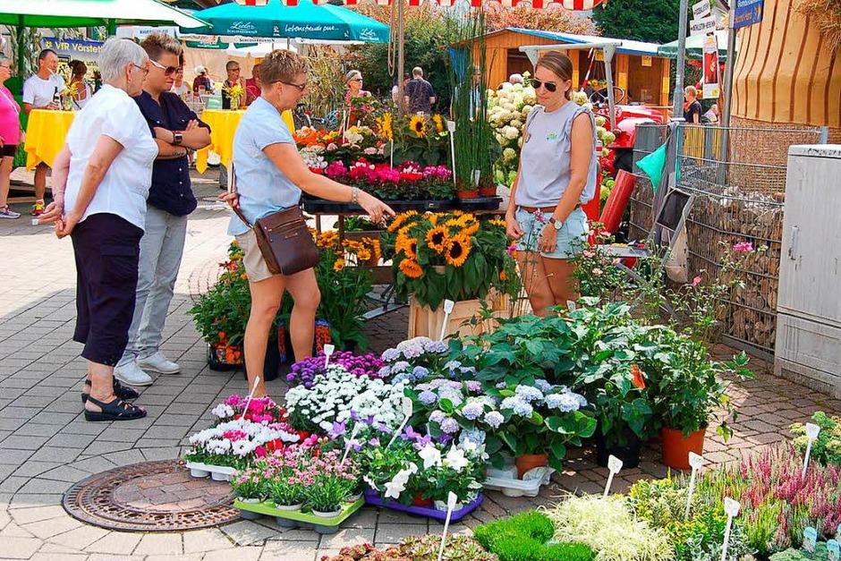 Erstmals gab es beim Gumbiswinkel-Fescht auch einen Erzeugermarkt örtlicher Landwirte und Gärtnereien. (Foto: Christian Ringwald)