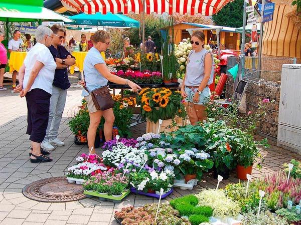 Erstmals gab es beim Gumbiswinkel-Fescht auch einen Erzeugermarkt örtlicher Landwirte und Gärtnereien.