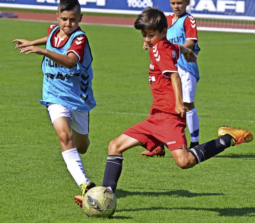 Das Gewinnerteam darf im Soccer-Court der FreiburgerFußballschule trainieren.  | Foto: Achim Keller