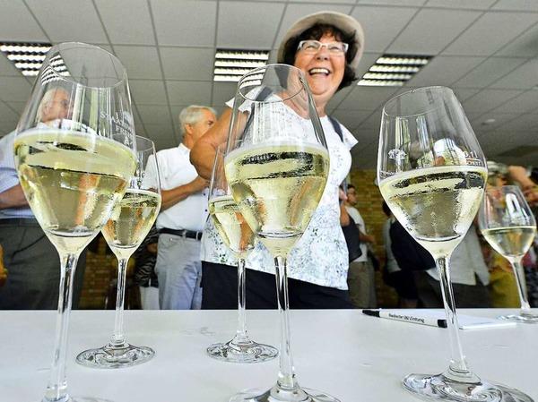 BZ-Ferienprogramm: Staatliches Weingut.