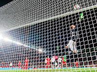 """Fans stören Spiel der Nationalelf mit """"Sieg Heil""""-Rufen"""
