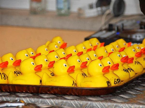 Impressionen vom zweiten Bad Säckinger Entenrennen
