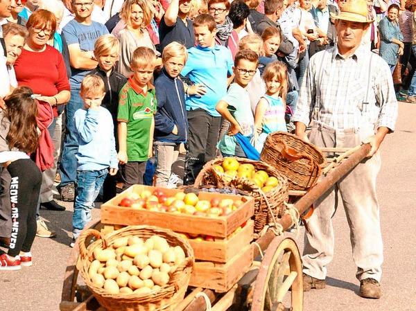 Beim Brauchtumsnachmittag am Samstag: Ein Handwagen mit Äpfeln.