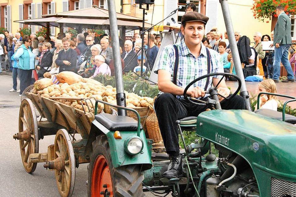 Beim Brauchtumsnachmittag am Samstag: Ein Dillenwagen, benannt nach den an der Seite angebrachten Brettern (Dillen), beladen mit Kartoffeln. (Foto: Manfred Frietsch)