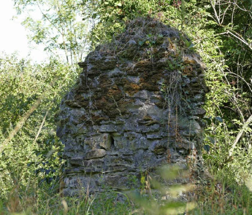 Die Mauerreste der Sankt Mathiskirche liegen versteckt im Wäldchen.    Foto: Susanne Ehmann