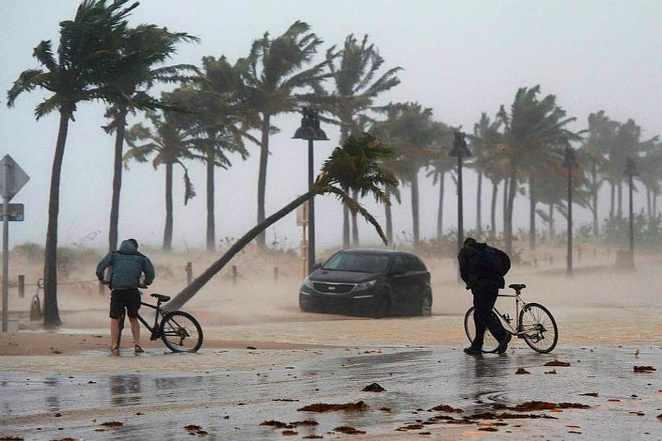 "Hurrikan ""Irma"" stürmt mit voller Wucht durch Florida (Foto: dpa)"