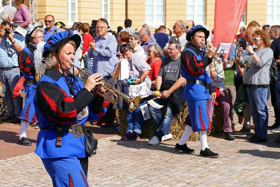 Impressionen vom Landesfestumzug in Karlsruhe, dem diesjährigen Ausrichter der Heimattage Baden-Württemberg. (Foto: Sylvia Sredniawa)