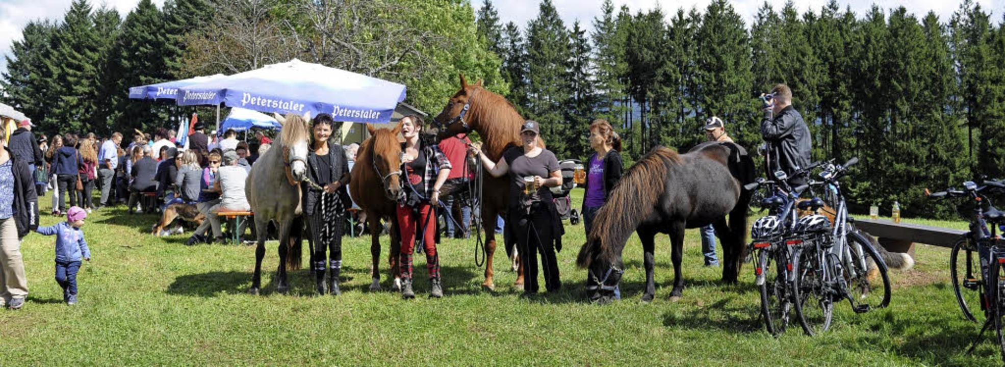 Die Besucher kamen zu  Fuß, per Rad od...m Pferd nach Katzenmoos zum Bergfest.     Foto: Fotos: Andrea  Kurz