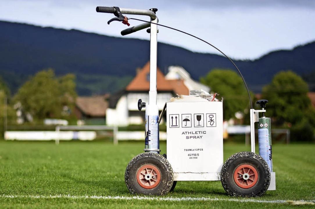 Rasen mähen und Linien ziehen: Sportplätze sind nicht von alleine in Topzustand.  | Foto: Jonas Hirt