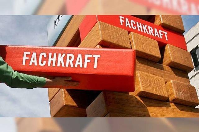 Wie wollen die Kandidaten im Wahlkreis Lörrach-Müllheim den regionalen Fachkräftebedarf sichern?