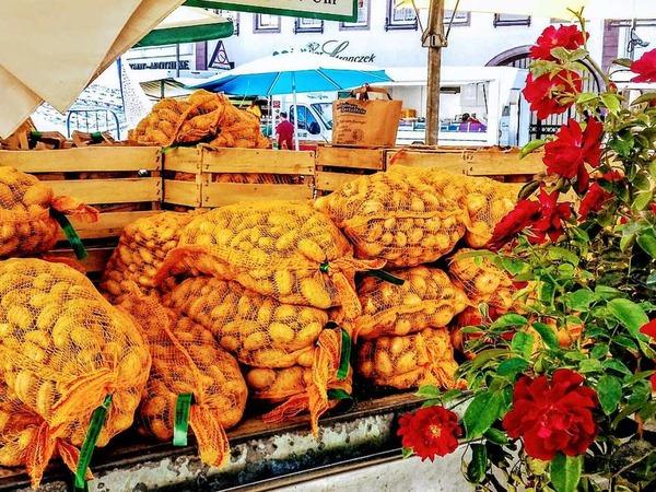 Forchheimer Kartoffeln auf dem Emmendinger Markt (Emmendingen)