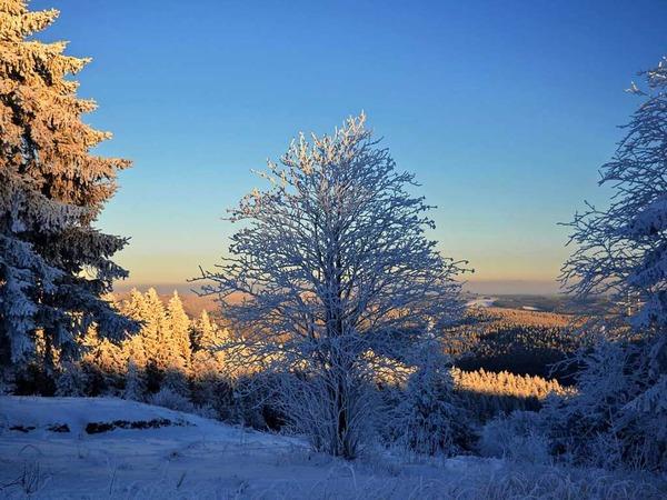 Winter Zauber (Kandel)