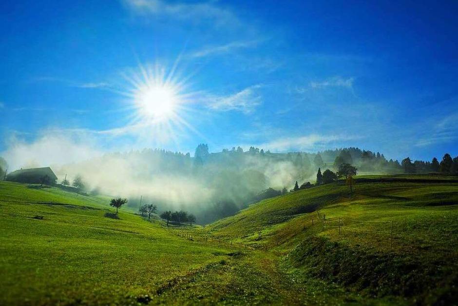 Herbstnebel und Sonne am Branden (Münstertal) (Foto: Armin Pfefferle)