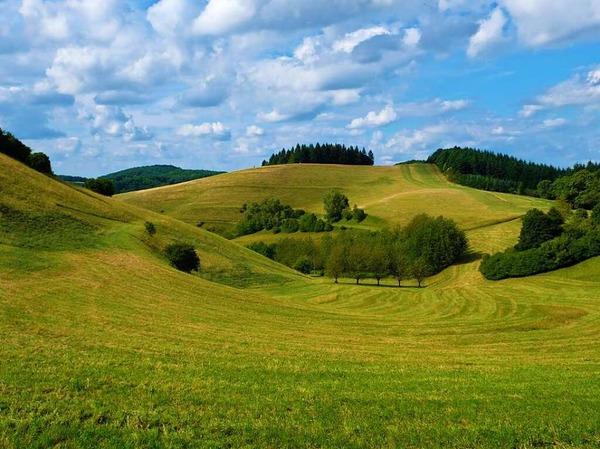 Landschaft am Kaiserstuhl (Kaiserstuhl)