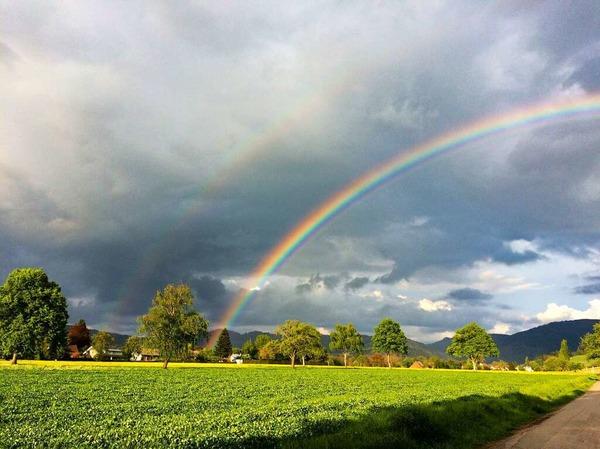 Regenbogen über dem Dreisamtal (Kirchzarten)