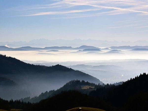 Alpenblick vom Zeller Blauen (Zell im Wiesental)