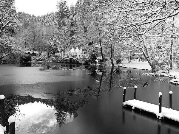 Ruhe am Waldsee (Waldsee)