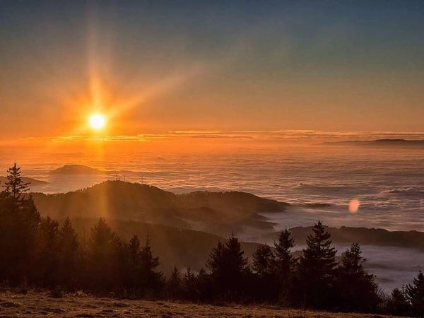 Sonnenuntergang im Schwarzwald (Waldkirch)