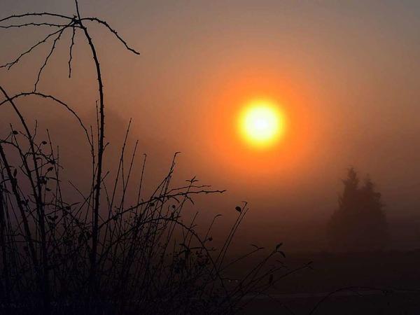 Sonnenuntergang im Nebel (Wittnau)