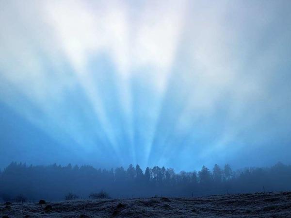 Wanderung in Nebel und Licht (Kandel)